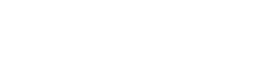 AMICAL 2019 at the American University in Cairo