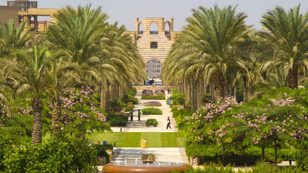 A photo of the AUC campus with its tall palm trees and blooming garden.